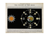 Phases of the Moon, c. 1846 Giclee Print by  Science Source
