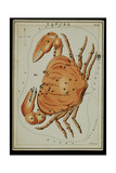 Cancer Constellation, Zodiac Sign, 1825 Giclee Print by  Science Source