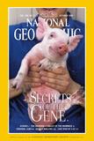Cover of the October, 1999 National Geographic Magazine Fotografisk tryk af Karen Kasmauski