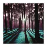 Technicolor Trees 3 Giclee-trykk av  Soderberg