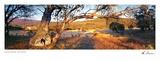 Coolamine Cottage Prints by Ken Duncan