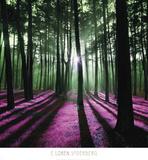 Technicolor Trees 1 Posters av Loren Soderberg