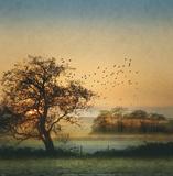 Good By Day Birds Poster von William Vanscoy