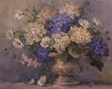 Delizia blu e bianca Stampe di Barbara Mock