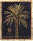 Caribbean Palm I With Bamboo Border Art by Betty Whiteaker