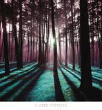 Technicolor Trees 3 Posters av Loren Soderberg