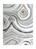 Shades of Gray I Posters av Liz Jardine