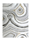 Shades of Gray I Premium Giclee Print by Liz Jardine