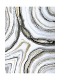 Shades of Gray II Poster av Liz Jardine