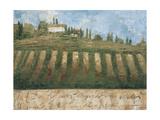 Rustic Tuscany Premium Giclee Print by Liz Jardine