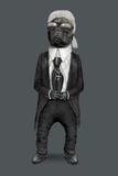 Fashion (Pets Rock) Póster por  Takkoda