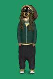 Reggae (Pets Rock) Láminas por  Takkoda