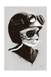 Cat Racer Lámina giclée prémium por Hidden Moves