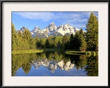 Reflections of the Teton Range in Schwabacher Landing Framed Photographic Print by Robbie George