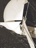 Full Sail I Art by Ingrid Abery