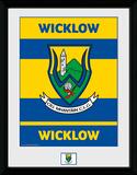 Gaa County- Wicklow Samletrykk
