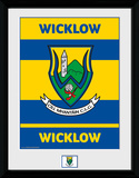 Gaa County- Wicklow Collector Print