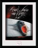 Roger Waters- The Wall Live Lámina de coleccionista