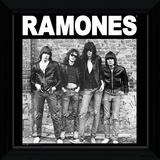 The Ramones Framed Album Art Samletrykk
