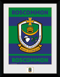 Gaa County- Roscommon Collector Print
