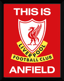Liverpool- This Is Anfield Lámina de coleccionista