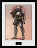 Destiny- Titan Stampa del collezionista