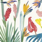 Tropical Exotics I Giclée-vedos tekijänä Alan Halliday