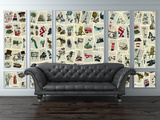 Creative Collage Marion McConaghie Pages Mural de papel de parede
