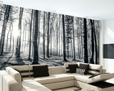 Black and White Forest Wall Mural Tapettijuliste