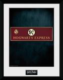Harry Potter- Platform 9 3/4 Samletrykk