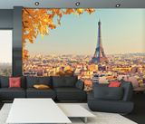 Paris Skyline Wall mural Wallpaper Mural