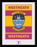 Gaa County- Westmeath Collector-tryk