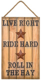 Live Right Sign Wood Sign