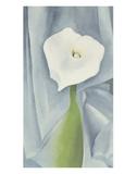 Calla Lily on Grey, 1928 Pôsteres por Georgia O'Keeffe