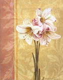 Flower Bouquet II Posters af Catherine Jones