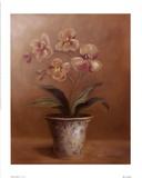 Flores de Olivia I Láminas por Cheovan