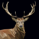Majestic Deer with Mighty Antlers on Dark Background Posters af  mid92