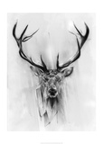 Red Deer Poster by Alexis Marcou
