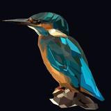 Littel Blue Bird Kingfisher on Dark Background Láminas por  mid92