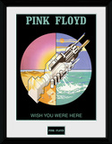 Pink Floyd- Wish You Were Here 2 Reproduction encadrée pour collectionneurs