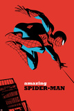 The Amazing Spider-Man No.7 Cover Poster di Michael Cho