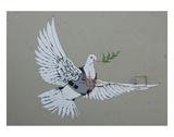 Dove Kunst av  Banksy