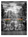 Typical Amsterdam II Poster von Melanie Viola