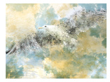 Digital Art Vanishing Seagull Stampe di Melanie Viola