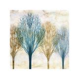 Among the Trees I Reproduction procédé giclée par Chris Donovan