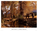 Fall Colors Affiches par Robert Dawson