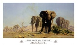 The Ivory Is Theirs Posters af David Shepherd