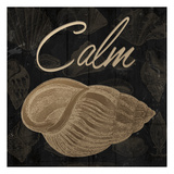 Calming Shell Poster di Jace Grey