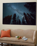 The Milky Way Shines Above the Forest in the San Juan Mountains of Southern Colorado. Posters tekijänä Ryan Wright
