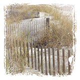 Fence By The Beach Prints by Melody Hogan